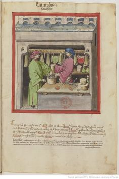 IBN BUTLÂN , Tacuinum sanitatis 15. Jhd Latin 9333  Folio 91r