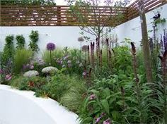 Image result for white rendered raised beds with lavender