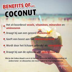 De voordelen van deze tropische lekkernij op een rijtje!  #dagvandekokosnoot #benefit #lucovitaal #vitamins #healthyliving #healthychoices #health #foodsupplement #energie #cholesterol #spiermassa #kokosnoot #kokos #coconut