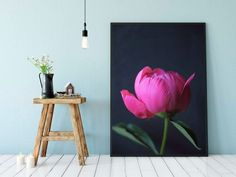 Gifts For Her – How to Really Impress Women on Any Budget – Gift Ideas Anywhere Neutral Wall Colors, White Colors, Peony Print, Dark Flowers, Extra Large Wall Art, Valentines Gifts For Her, Free Prints, Hanging Wall Art, Pink Peonies