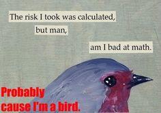 Birds are really bad at math.