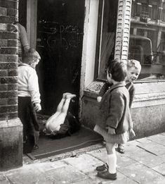 """Artiste d'origine hongroise moins connue que ses compatriotes Robert Capa et André Kertész, mais """"grande dame de la photographie néerlandaise""""."""