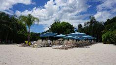 O que penso sobre Discovery Cove, o parque de Sea World onde as pessoas nadam com golfinhos em Orlando