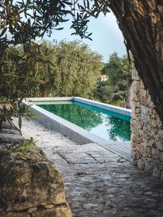 Fifteen Gardening Recommendations On How To Get A Great Backyard Garden Devoid Of Too Much Time Expended On Gardening Chez Carlo Milk Decoration Outdoor Pool, Outdoor Gardens, Pool Backyard, Diy Pool, Pool Landscaping, Moderne Pools, Natural Swimming Pools, Small Pools, Dream Pools