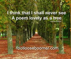 Poems, Quotes, Outdoor, Quotations, Outdoors, Poetry, A Poem, Outdoor Games, Outdoor Living