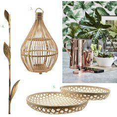Rainforest Interior Trend - Bamboo accents such as these lanterns and decorative bowls will add a light and airy touch to lush, tropical inspired rooms. Get the look on our blog.