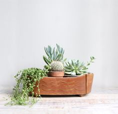 Vintage Mid Century Pottery Planter Collection. Love succulents. Easy to take care of and awesome looking