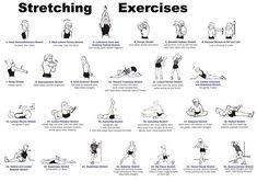 Whole body stretching routine for improved flexibility and health.