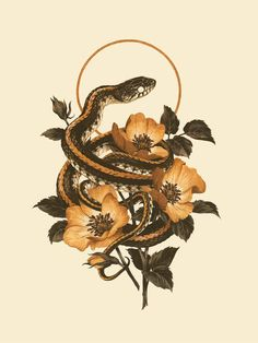 snake art - Teagan White, A Voice for the Animal World Snake Drawing, Snake Art, Snake Painting, Watercolor Painting, Natur Tattoos, Kunst Tattoos, Tattoos Bras, Snake Tattoo, Wow Art