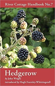 Hedgerow (River Cottage Handbook, No.7): Amazon.co.uk: John Wright, Hugh Fearnley-Whittingstall: 8601234614678: Books Common Garden Plants, Hugh Fearnley Whittingstall, Sweet Chestnut, John Wright, River Cottage, British Countryside, Got Books, Free Reading, Cooking Tips