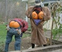 Halloween - I would do this in my front yard!!