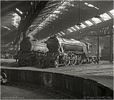 York Shed - England Diesel Locomotive, Steam Locomotive, Old Trains, Vintage Trains, Steam Trains Uk, Time Travel Machine, Heritage Railway, Flying Scotsman, Holland