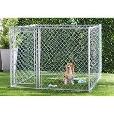 Archie & Oscar™ Abigail Steel Yard Kennel & Reviews | Wayfair Lucky Dog Kennel, Large Dogs, Small Dogs, K9 Kennels, Waterproof Tarp, Dog Pen, Pet Resort, Pet Cage, No Plastic
