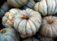 Find images and videos about autumn and pumpkin on We Heart It - the app to get lost in what you love. White Pumpkins, Fall Pumpkins, Photo Fruit, Cinderella Pumpkin, Cinderella Disney, Over The Garden Wall, Happy Fall Y'all, Pumpkin Decorating, Holiday Decorating