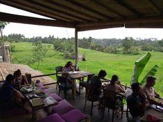 UBUD: Restaurant Sari organic