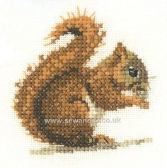 Buy Red Squirrel Cross Stitch Kit Online at www.sewandso.co.uk