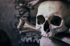 Feliz día de Todos los Santos  Imagen gratis en Pixabay de Zezya - Cráneo, Osario, República Checa