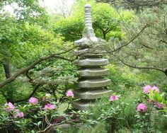 Anderson Japanese Gardens - so beautiful in Spring!