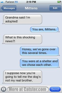 Texts From Mittens: The Tough Guy Edition | Catster  Click image to read more!