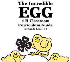 The Incredible Egg. 4-H Classroom Curriculum Guide pdf - fantastic resource for teaching about chicks and eggs!  http://extension.oregonstate.edu/catalog/4h/4-H1500theincredibleegg.pdf