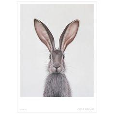 """""""Hare"""" er et av bildene i serien """"Nature"""". Selges som poster i str. 50x70, trykket på 170g matt ubestrøket papir. Leveres sammenrullet i papprør."""