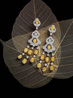 White and Yellow Diamond Earrings Gems Jewelry, Photo Jewelry, Jewelry Art, Silver Jewelry, Fine Jewelry, Graff Jewelry, Diamond Earrings For Women, Expensive Jewelry, Jewelry Photography