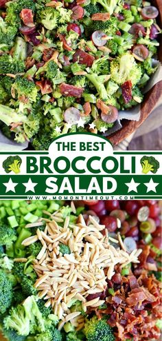 Every bite of this vegetable side dish is delicious! Family and friends will always request the BEST Broccoli Salad recipe ever. Packed with bacon, grapes, almonds then tossed in a creamy dressing, it… Best Broccoli Salad Recipe, Broccoli Salad Bacon, Green Salad Recipes, Easy Salad Recipes, Salad Dressing Recipes, Side Dish Recipes, Healthy Recipes, Healthy Eats, Easy Summer Salads