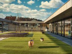 Belebte Architektur - Steiermark 2020-01-21 - Belebte Architektur - Steiermark 2020-01-21 Architecture