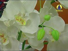 Vida com Arte | Orquídea em Biscuit por Alessandra Assi - 08 de Julho de 2014 - YouTube