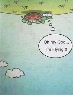 Flyiiiiiiiing!