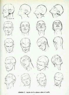 Muscular male head