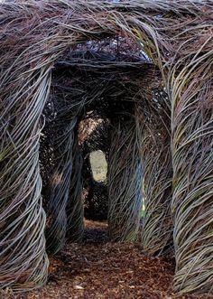 Patrick Dougherty, woven willow sculptures.