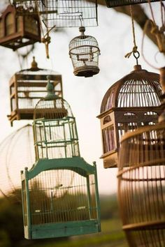 birdhouses in the garden