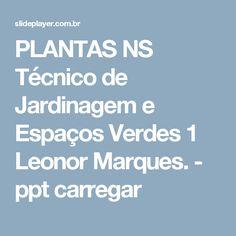PLANTAS NS Técnico de Jardinagem e Espaços Verdes 1 Leonor Marques. -  ppt carregar