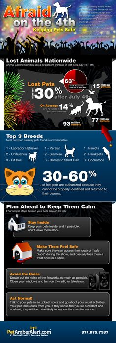 Lost Pets in the US - iNFOGRAPHiCs MANiA
