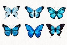 Watercolor Butterflies - Graphics - 2