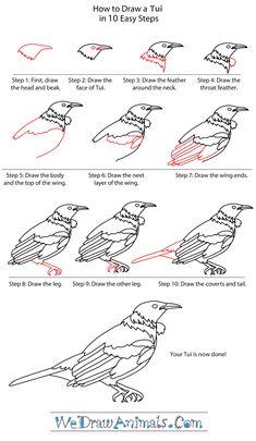 Image result for bird drawings Kiwiana, Bird Drawings, Nativity, Birds, Animal, Artwork, Painting, Image, Drawing Tutorials