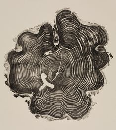 """A 31-year-old honey locust. """"With its peculiar shape and furrowed bark,this tree clearly stood out from the stack of logs it was found in,"""" Gill said. """"The white 'T' form on the bottom left of the print began as a bark pocket, caused by the undulating cambium layer growing around and encapsulating the bark. Moisture in the pocket attracted carpenter ants, which excavated the inner deadwood."""""""