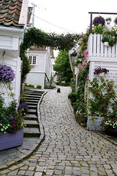 Narrow streets of Stavanger | Flickr - Photo Sharing!