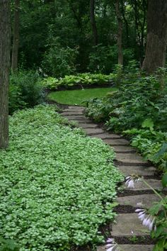 Large backyard landscaping ideas are quite many. However, for you to achieve the best landscaping for a large backyard you need to have a good design.