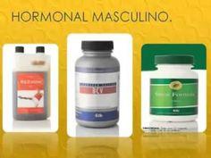 MALEPRO   Sistema Hormonal Masculino