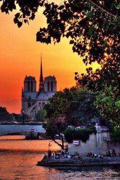 Paris est une Fête! — Notre-Dame de Paris.
