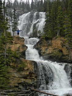 Tangle Creek Falls, Jasper National Park - Alberta Canada