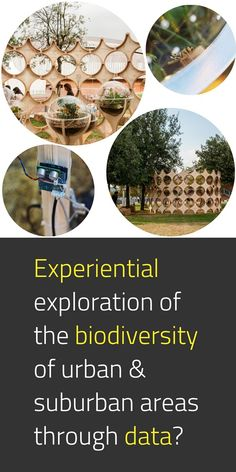 Can data help us build better relationships between the built environment, humans, and other living systems? This is an example of a movable interactive laboratory that makes intensive investigations on the biodiversity of urban and suburban areas. #NewEuropeanBauhaus #EUGreenDeal #OurPlanet #Science #Research #Innovation #UrbanDesign #EU #EuropeForCulture #TeamEurope 📸 Wunderbugs / © Francesco Lipari