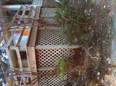 Lattice work conceals the underside of the deck, which is considerable given the five foot vertical drop from the top of the deck to ground level. Wooden Decks, Building A Deck, How To Level Ground, Acre, Stairs, Outdoor Structures, Drop, Green, Stairway