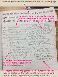 Mentor Sentences Notebook- like the idea of collecting mentor sentences or even paragraphs!