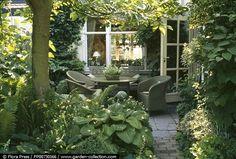 Courtyard with ferns & hostas | FlowerzandGardenz