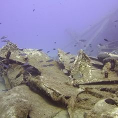 Dive at the beautiful Giannoula K. in Rhodes, Greece. Greece Culture, Greece Fashion, Greece Holiday, Shipwreck, Greece Travel, Rhodes, Beautiful Sunset, Snorkeling