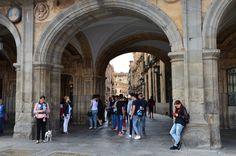 https://flic.kr/p/ytRvwT | .. quick stop to say hi | Salamanca, Spain