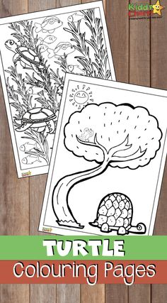 Turtle coloring pages for kids and adults too Adult and kids turtle coloring pagesYou can . Turtle Coloring Pages, Cool Coloring Pages, Coloring Pages For Kids, Coloring Sheets, Coloring Books, Animal Activities For Kids, Play To Learn, Easy Crafts For Kids, Creative Thinking